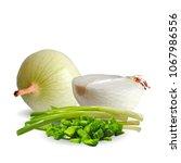 fresh  nutritious  tasty onion. ... | Shutterstock .eps vector #1067986556