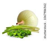 fresh  nutritious  tasty onion. ... | Shutterstock .eps vector #1067986562