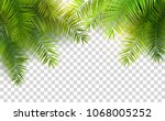 summer palm leaves on... | Shutterstock .eps vector #1068005252