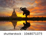 Elephants Are Worshiping The...