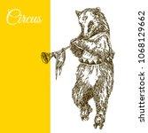 circus bear on roller skates.... | Shutterstock .eps vector #1068129662