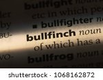 bullfinch word in a dictionary. ... | Shutterstock . vector #1068162872