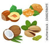 a set of different nuts nuts... | Shutterstock .eps vector #1068258695
