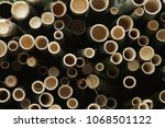 the bamboo from the forest  | Shutterstock . vector #1068501122