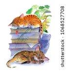 Stock photo sleeping kittens on books watercolor illustration on white background 1068527708