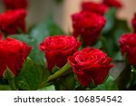 Stock photo beautiful red roses 106854542