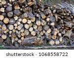 firewood stacked in  pile.... | Shutterstock . vector #1068558722
