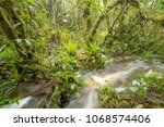 floodwater pouring through the... | Shutterstock . vector #1068574406