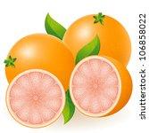grapefruit vector illustration... | Shutterstock .eps vector #106858022