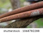 rust and tree durability | Shutterstock . vector #1068782288