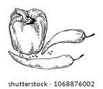 peppers engraving vector...   Shutterstock .eps vector #1068876002
