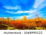 Autumn Multicolored Nature...
