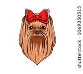 yorkshire terrier portrait. bow ... | Shutterstock .eps vector #1069350515
