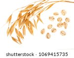 oat spike with oat flakes... | Shutterstock . vector #1069415735