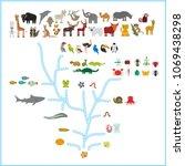 evolution in biology  scheme... | Shutterstock .eps vector #1069438298