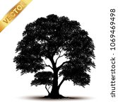 tree silhouette isolated on... | Shutterstock .eps vector #1069469498