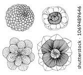 set hand drawn beautiful flower ...   Shutterstock . vector #1069489646