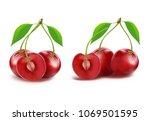 cherry fruit vector of ripe red ... | Shutterstock .eps vector #1069501595