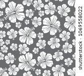 white on grey random hibiscus...   Shutterstock . vector #1069558022