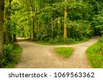 muddy path parting into two at... | Shutterstock . vector #1069563362