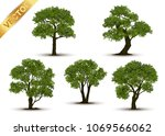 collection beautiful tree... | Shutterstock .eps vector #1069566062