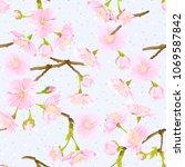 seamless pattern  background... | Shutterstock .eps vector #1069587842