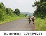 two farmer women from behind ... | Shutterstock . vector #1069595285