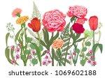 horizontal border  carnation ... | Shutterstock .eps vector #1069602188