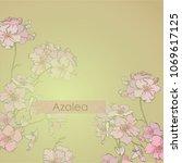 spring flowering azalea.... | Shutterstock .eps vector #1069617125