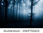 dark scary woods background   Shutterstock . vector #1069732622