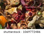 inside of a composting container | Shutterstock . vector #1069772486