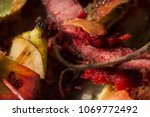 inside of a composting container | Shutterstock . vector #1069772492