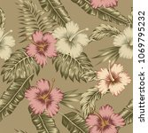 exotic flowers hibiscus... | Shutterstock .eps vector #1069795232