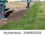 laying rolled turf | Shutterstock . vector #1069833335