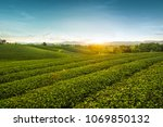 beautiful landscape view of... | Shutterstock . vector #1069850132