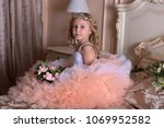 girl in white with pink dress... | Shutterstock . vector #1069952582