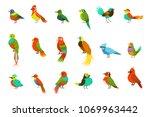 exotic birds from jungle rain... | Shutterstock .eps vector #1069963442