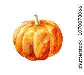 orange pumpkin watercolor... | Shutterstock . vector #1070078066