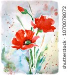 red poppies flowers with green... | Shutterstock . vector #1070078072