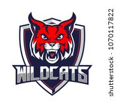 bobcats or wild cats for sport... | Shutterstock .eps vector #1070117822