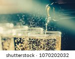 party and holiday celebration... | Shutterstock . vector #1070202032