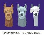 lama's head. alpaca. vector... | Shutterstock .eps vector #1070221538