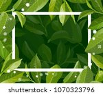 green tea leaves manu and... | Shutterstock .eps vector #1070323796