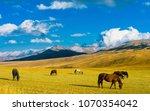 Lonely horses in Kazakhstan steppe, near Almaty city