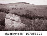 Scene from Coastal Footpath on Jurassic Coast, Isle of Purbeck near Swanage, Dorset, England, UK - stock photo