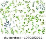 beautiful green herbs and... | Shutterstock .eps vector #1070652032