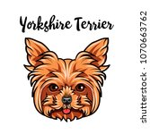 yorkshire terrier muzzle. dog... | Shutterstock .eps vector #1070663762