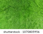 artificial green lawn background | Shutterstock . vector #1070805956