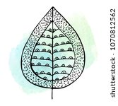 hand drawn decorative leaf on a ...   Shutterstock . vector #1070812562