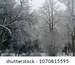 winter trees background | Shutterstock . vector #1070815595